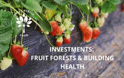 Investments: Fruit Forests and Building Health