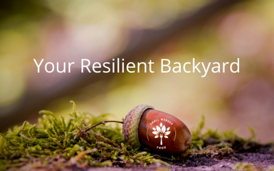 Your Resilient Backyard